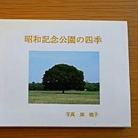 アキコさんの写真集ー昭和記念公園の四季ー