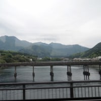 《手造の旅》屋久島+指宿 第二回 一日目 ブリの幸運