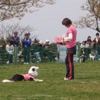 マザーカップ2010 4月大会 (リシェクリトット編)