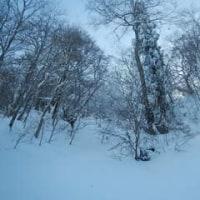 寒波の後の氷ノ山