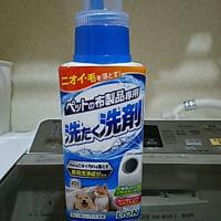 お試し洗剤