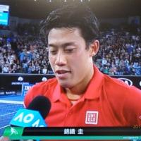 全豪オープン 錦織4回戦進出