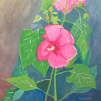 芙蓉の花を描く