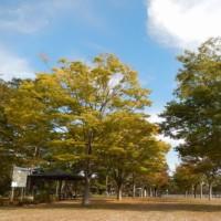 馬事公苑コースラウンド 2016.10.16