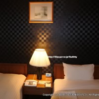 人吉温泉の夜は宿泊はホテルサン人吉。朝んぽは青井阿蘇神社へ
