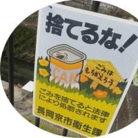 街中の川が汚れるのはゴミステーションも1つの要因?・・・きれいな川作り、小さな川も見逃さない・京の川