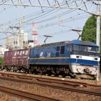 EF210ラストナンバー牽引77レ(6月23日撮影)