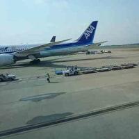 ANA NH808 バンコク発成田到着の便でビジネスクラスに乗ってきた