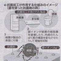 抗菌加工製品