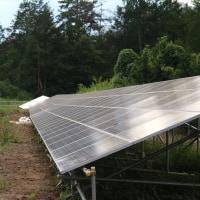パナックス 第三発電所 除草剤散布効果