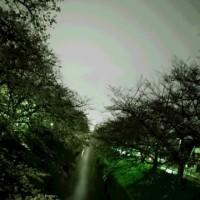 天然照明効果