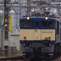 5/16 E127系NN配給