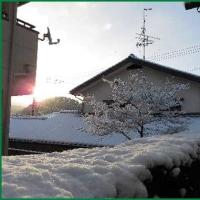 「大雪」 二日目