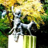 デジブック 『晩秋の群馬の森』   H-28-11-28