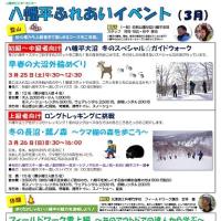 【2月22日更新】八幡平ビジターセンター 3月のイベント情報!