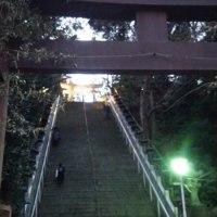 都内のあらゆる神社に参拝の旅