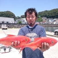 6月23日(金)キンメ釣果