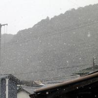 昼でも1度にしか上がらなかったです。 ズーット雪時雨が続き・・・