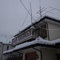 大雪ですね