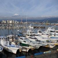 富士山夜景を求めて田子の浦港へ