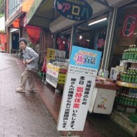 鹿児島 指宿旅行 2日目 ~長崎鼻~