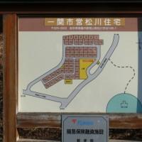 一関市東山町松川のオオイヌノフグリ(大犬の陰嚢) 2017年2月27日(月)