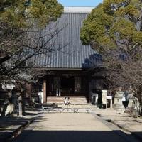 徳川家の菩提寺 歴代将軍の位牌を祭る「大樹寺」