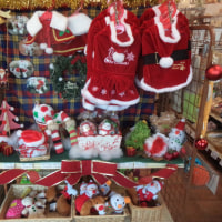 クリスマスの準備はお済ですか?