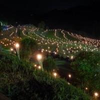 大山千枚田〜棚田の夜祭。