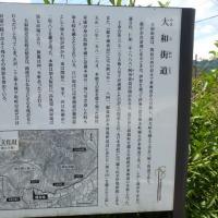 加太越え(柘植~鹿伏兎):ここは三重県