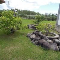 2016年小笠原村硫黄島慰霊墓参(189)天山慰霊碑と納骨堂の間にある植栽