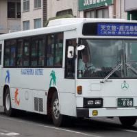 鹿交0888