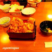 小田原の老舗「だるま料理店」で舌鼓