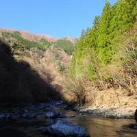 私的渓流釣り解禁。