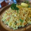 南茨木町のネパール料理店【ティファール】のヒマラヤ盛りに挑戦しました。