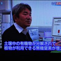 4/23 報道特集 自然栽培