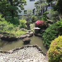 スポコミ・カワラ版 6月22日(木)友引