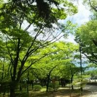 2016年振り返り④7月の思い出vol.3松本