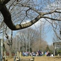 3月のアンデルセン公園