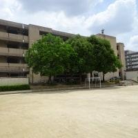 東佐井寺小学校