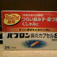 パブロン鼻炎カプセル