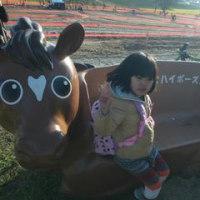 16-17 東海CX#6@愛知牧場