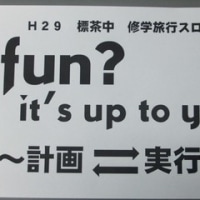 fun? it's up to you