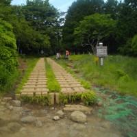 リハビリのお手伝いで花立山まで登る丹沢:塔ノ岳(今年21回目)