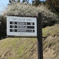 A.91.低山の散策は春になる前に、