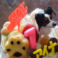 祝!アイナの誕生日!7歳になりました!!
