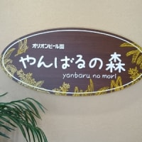 クルミりすと沖縄グルメ?