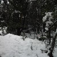 初の雪山w