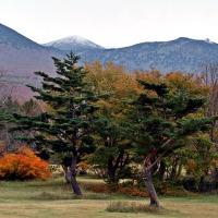 萱野高原の景観(No3)
