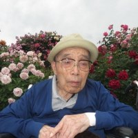 中野市一本木公園 バラ祭りへ第5弾